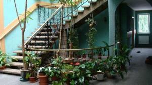 Hotel Julian
