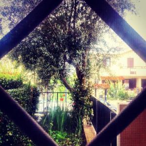 Spazio e tranquillità a Roma - abcRoma.com