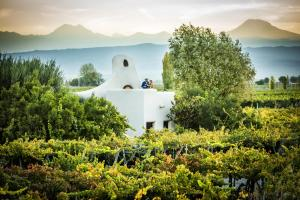 Cavas Wine Lodge (1 of 42)