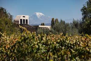 Cavas Wine Lodge (7 of 42)