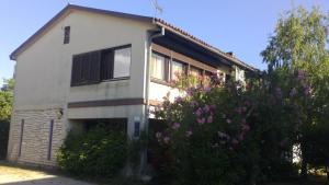 Guest House Jole