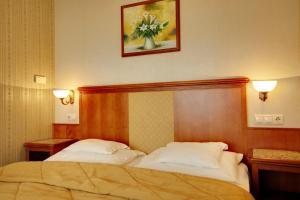 Elizabeth Hotel, Hotels  Gyula - big - 90