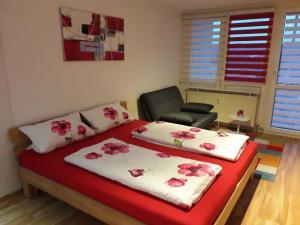 Apartment Lahr