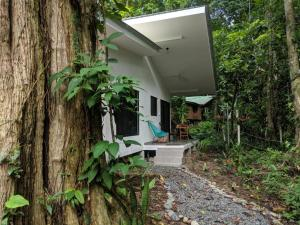 Peaceful, Private and Modern Jungle Studio, Cocles