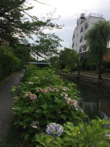 Suzume-An, Kúriák  Kiotó - big - 156