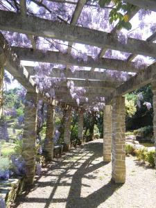 Quinta das Aveleiras, Farm stays  Torre de Moncorvo - big - 70