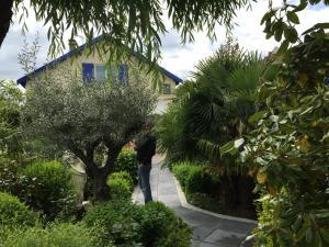 Location gîte, chambres d'hotes B&B Casa La Palma dans le département Aisne 2