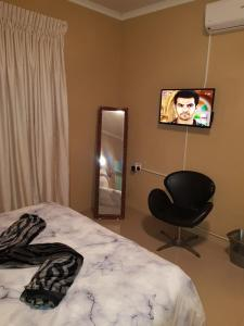 FNT Guesthouse, Pensionen  Johannesburg - big - 2