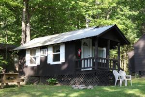 obrázek - Lake George Bear's Den