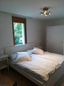 Bed & Breakfast - Hotel - Chur