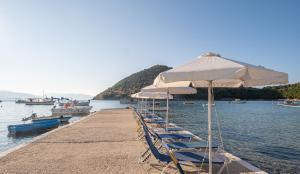 Dolfin Argolida Greece