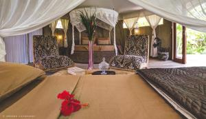 Sandat Glamping Tents (2 of 80)