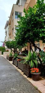 Apartments Lati