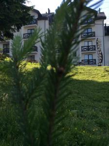 готель Адреналін - Hotel - Dragobrat