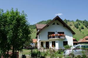 Bucuria Muntelui, Vendégházak  Törcsvár - big - 30