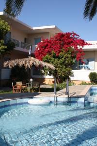 Cormoranos Apartments, Apartmány  Kissamos - big - 23