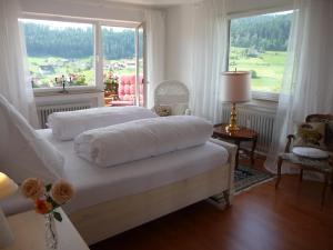 Schwarzwald-Ferienwohnungen Begert - Harlisberg
