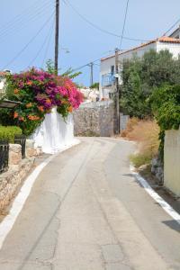 Jimi's House Agistri Greece