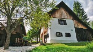 Alpine House 1100 - Hotel - Bohinj