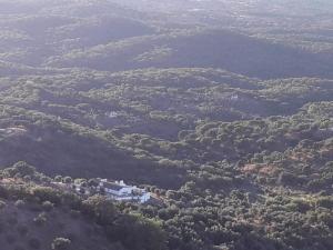 Olive Tree Cottage - Quinta de Evoramonte Corredoura