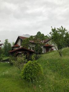 Hiša Krivopeta