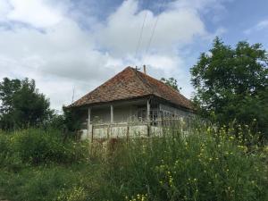 Kruglaya Shishka eco ethno agro village