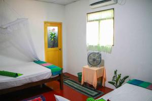 Green Grass Homestay