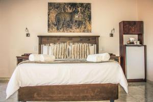 Mawusi Bush Lodge, Chaty  Hoedspruit - big - 5