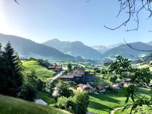 THE SUN&SOUL PANORAMA POP-UP HOTEL SOLSANA - Hotel - Gstaad