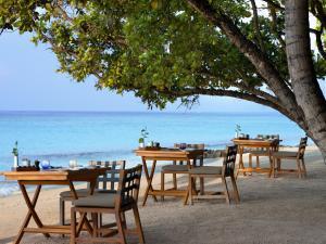 Vakkaru Maldives (29 of 45)