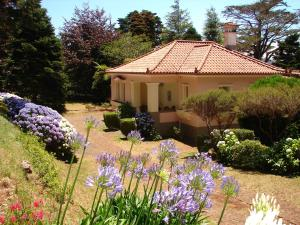 Casa da Lena, Santo da Serra