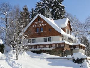 Pension & Restaurant Krakonoš - Hotel - Harrachov
