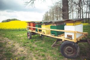Agroturystyka u Świątków