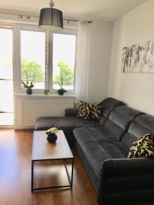 Apartament na Paderewskiego
