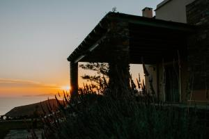 Bella Resort Andros Greece
