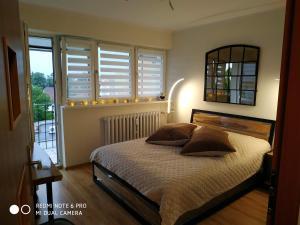 Apartament Briesen