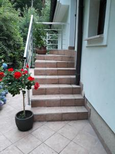 Apartma Dolomiti