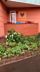 Хостел BlackFox, Москва