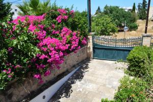 Villa Artemis Aegina Greece