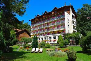 Wengener Hof - Hotel - Wengen