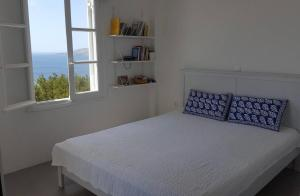 Beautiful View Family House Andros Greece