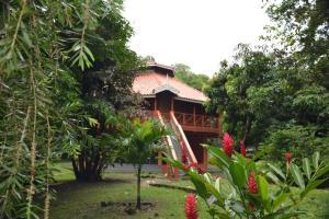 . Immortelle Tree House
