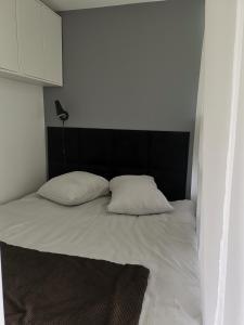 Apartament 80