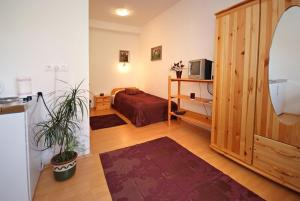 Hungaria Apartments, Апартаменты  Печ - big - 12