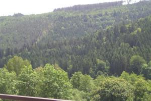 obrázek - Ferienwohnung Waldblick