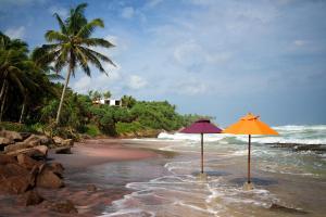 Underneath the Mango Tree Beach & Spa Hotel (8 of 31)