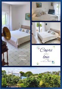 Capri love