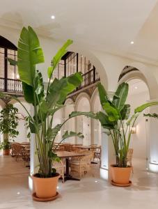 H10 Palacio Colomera, Hotely  Córdoba - big - 31
