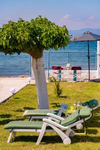 Kiko, the Coastline house Achaia Greece