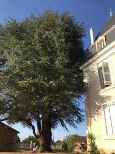 Le manoir Dordogne
